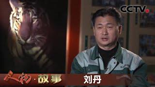 《人物·故事》 20200729 我的东北虎伙伴·刘丹| CCTV科教 - YouTube