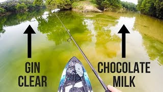 Unexpected BIG Catch While Fishing Small River    Gin Clear & Muddy Water Converge