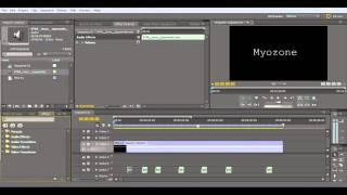 How to tutorial Adobe Premiere typewriter effect