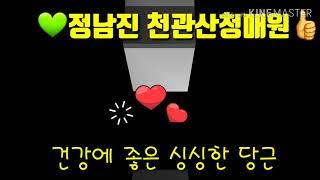 #천관산하 청매원#