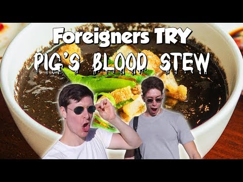 Foreigners Try Filipino Food (Dinuguan) at ZubuChon in Cebu! - Philippines Travel Vlog