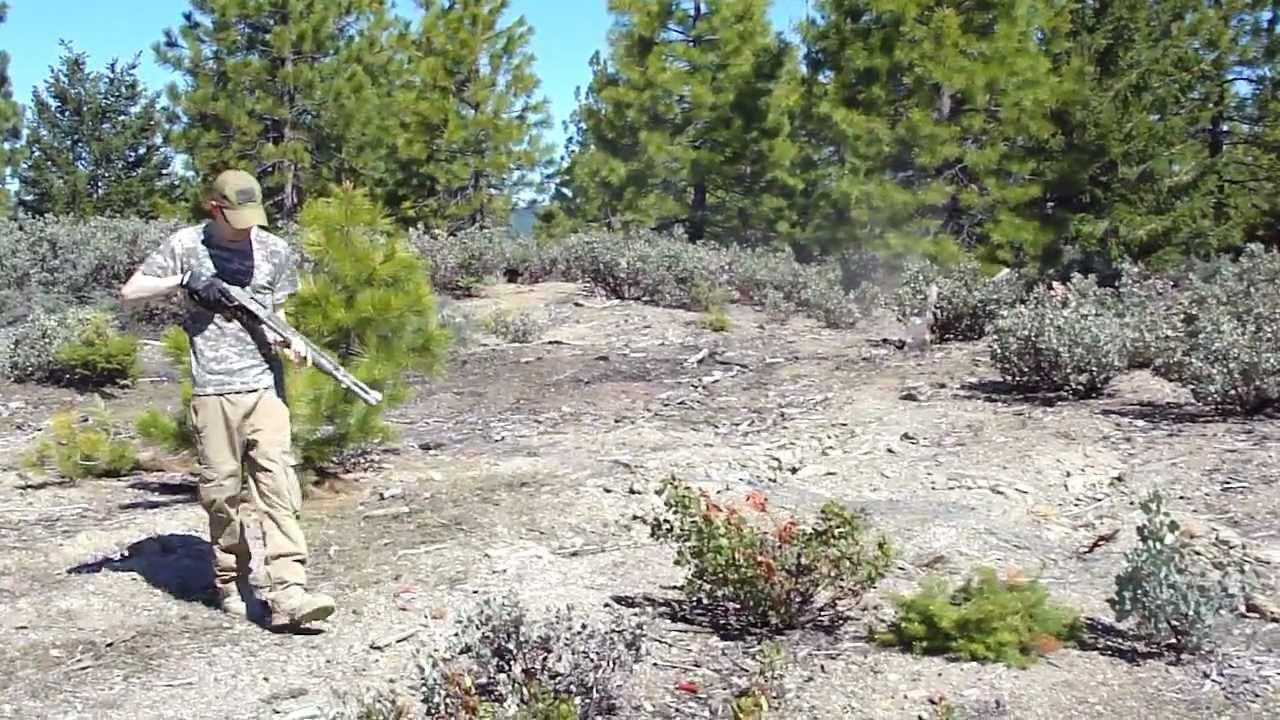 shotgun camping - youtube