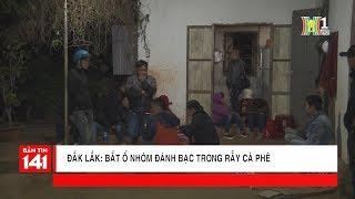 Triệt phá ổ bạc xóc đĩa trong rẫy cà phê thuộc thôn 19/8, Krông Pắk, Đắk Lắk   Nhật ký 141