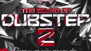12 - Ho! Riddim (Funtcase Remix) - The Sound of Dubstep 2