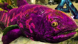 YOU CAN TAME FISH! FISH & OTTER TAMING (7) - Ark Aberration Gameplay