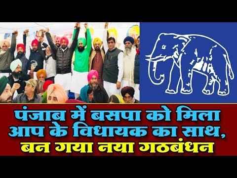 पंजाब में BSP के साथ आए इतने विधायक और सांसद, बन गया गठजोड । Punjab Aap MLA and MP alliance with BSP