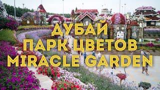 VLOG:Дубай, ОАЭ/ Чудо-сад Miracle Garden. Часть 2/ Куда сходить, что посмотреть в Эмиратах(Знаменитый парк Miracle Garden Dubai - это действительно