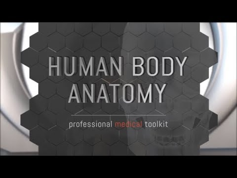 Washington University of Barbados is Launching  Human body anatomy application in 3D Animation