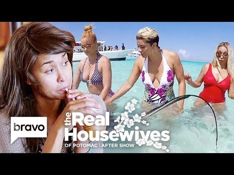 Download The Ladies Roast Katie Rost's Wigs & Swim With Stingrays On Vacation | RHOP After Show (S4 Ep16)