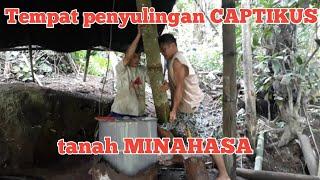 Download lagu Tempat penyulingan captikus di minahasa!!! Captikus Manado