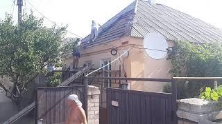 Строим дома вальмовую крышу (Часть 1)