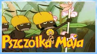 pszczłka maja odcinkw 4 maja wśrd mrwek