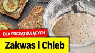 Zakwas, chleb na zakwasie i chleb na drożdżach 🍞 Wasze pytania i problemy w pigułce