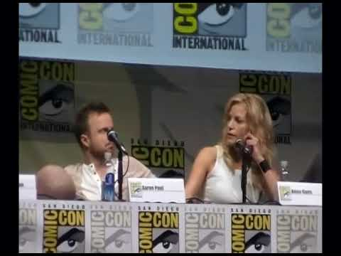 Anna Gunn Talks About Her Role As the