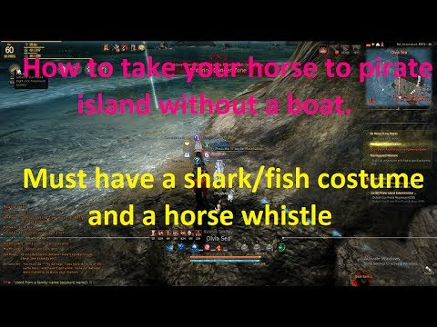 How to Take Your Horse To Pirates Without A Boat