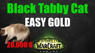 Black Tabby Cat Pet Farm 40,000-60,000 GOLD! - 7.2 WoW Gold Farming Guide