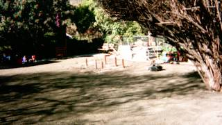 Artificial Turf Installation - La Mesa, California - Day Care Center - 10843