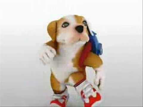 perro chacarron