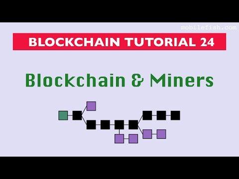 Blockchain tutorial 24: Blockchain and miners
