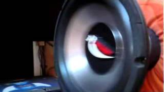 Subwoofer max excursion Bass i Love You free air excursion Renegade GTR 1200