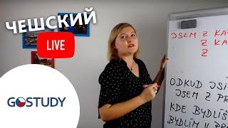 Марафон чешского языка. Живой урок № 1