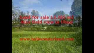 Land for sale in Ubud Bali, magnificent view in Central Ubud -- TJUB357