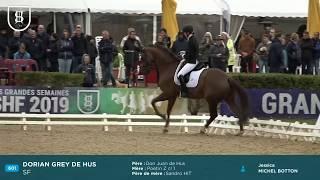 Saumur 2019 - DORIAN GREY DE HUS, Champion des 6 ans