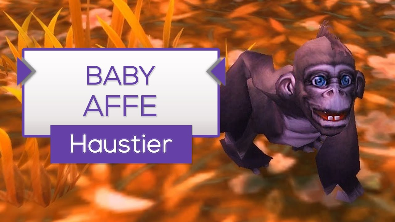Babyaffe Haustier Tipp Wow Youtube