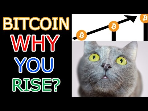 Two Big Factors Are Driving Up Bitcoin Prices (The Cryptoverse #93)