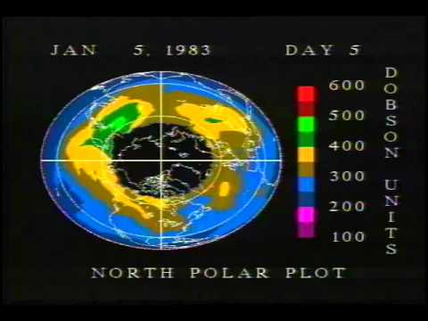 Southern and Northern Hemisphere Total Ozone as Seen by TOMS