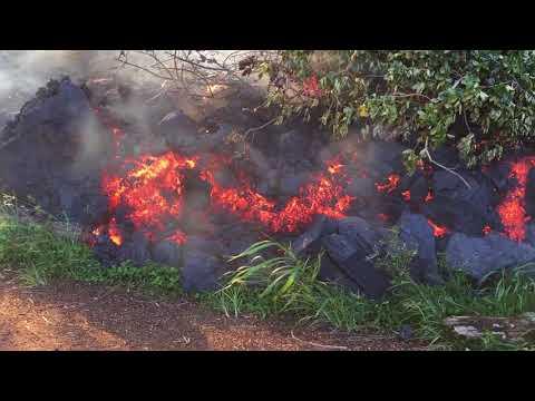 Lava covers Noni Farms Rd. and Pahoa Kapoho Rd. lower Puna Evacuates
