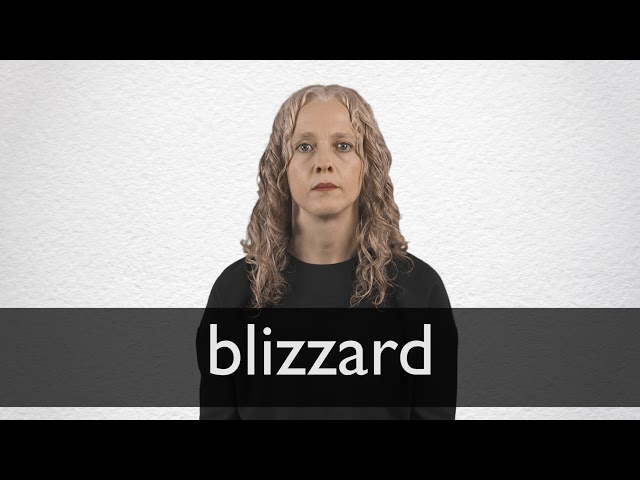 Blizzard Definition And Meaning Collins English Dictionary