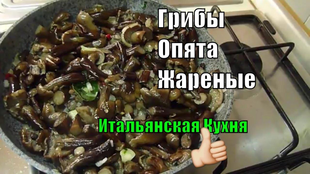 Грибы Опята Жареные на Сковороде Итальянская Кухня #рецепты
