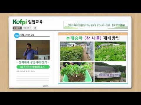 [산채] 눈개승마 재배방법 소개