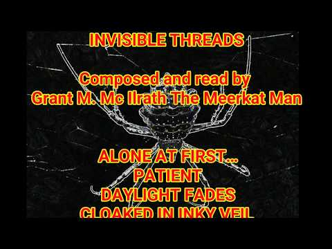 INVISIBLE THREADS POEM BY GRANT MC ILRATH THE MEERKAT MAN