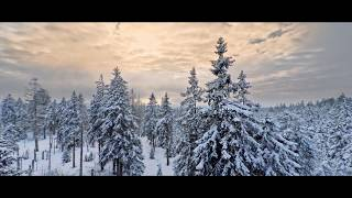 "Nationalpark Harz - covered in white OST Skyrim ""streets of whiterun"" 