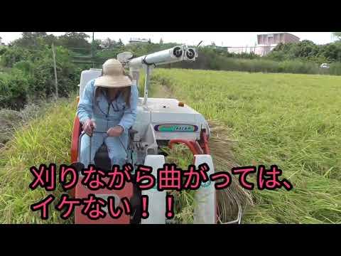 稲刈りTHEムービー2020