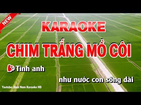 Karaoke Chim Trắng Mồ Côi - Song Ca