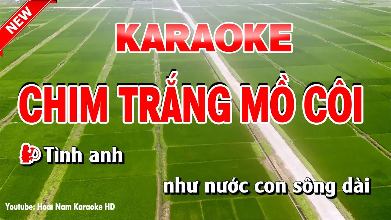 Karaoke Chim Trắng Mồ Côi – Song Ca