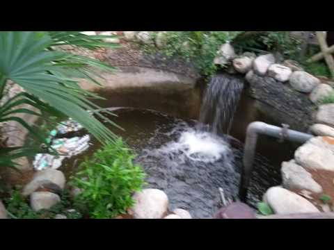 Waterfall at Company Garden , Mussoorie