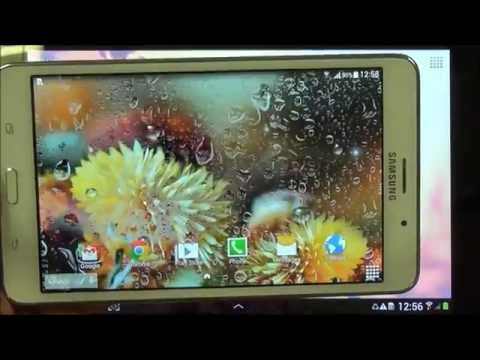 Autumn Flowers Live Wallpaper Apps On Google Play