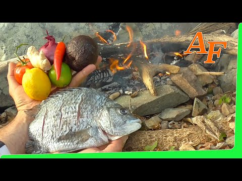 on-fire-catch-and-cook-sea-bream-fish-gummy-worms-/-snake-lollie-fishing-challenge-ep.360