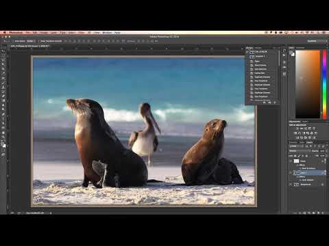 เทคนิคการใช้ Photoshop แต่งภาพ ตอน Action