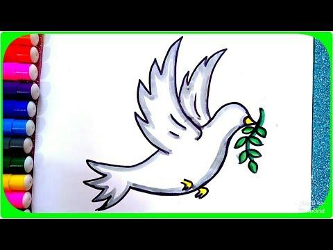 رسم حمامة السلام وغصن الزيتون للأطفال رسم حمامة تطير بالخطوات
