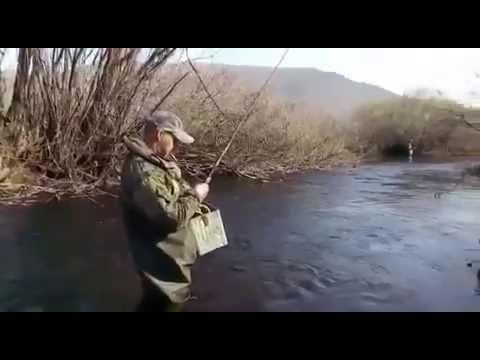 Рыбалка на семгу, хариуса. - рыбалка в терском районе