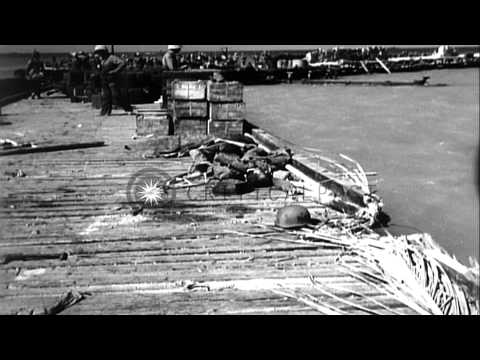 Dead American marines during the battle of Tarawa in Pacific Theater HD Stock Footage