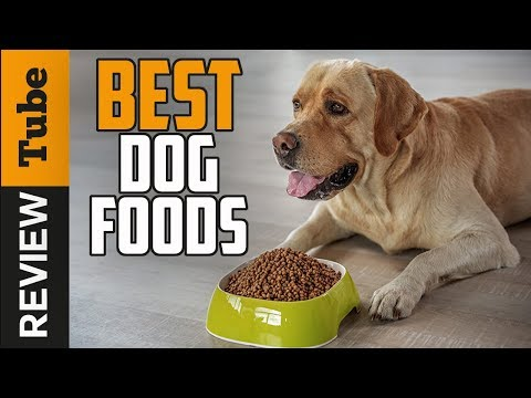 ✅Dog Food: Best Dog Food (Buying Guide)
