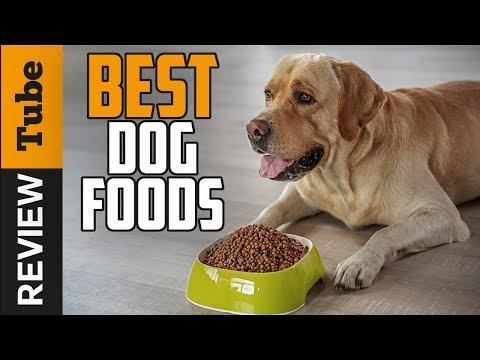 ✅dog-food:-best-dog-food-(buying-guide)