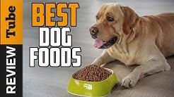 ✅Dog Food: Best Dog Food (Buying Guide)