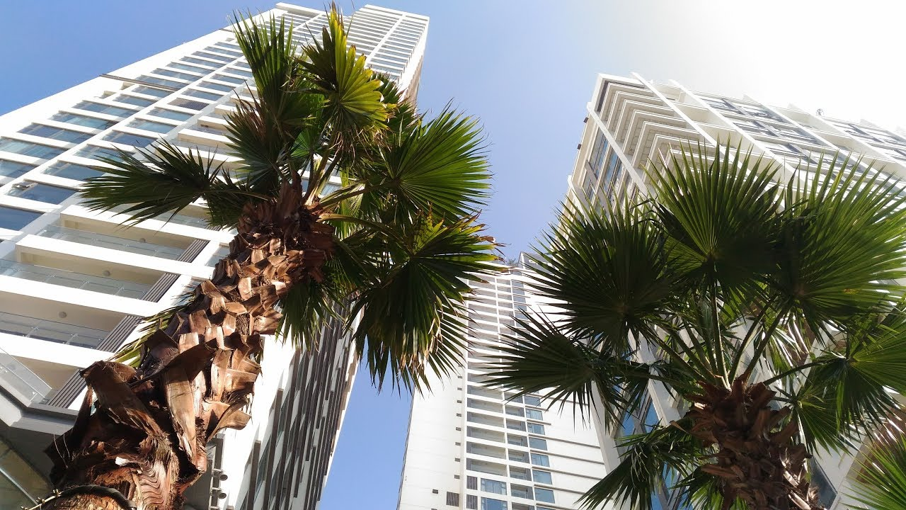 T12/2018 Căn hộ mẫu Gateway Thảo Điền /Gateway Thao Dien Apartments  | Ho Chi Minh City